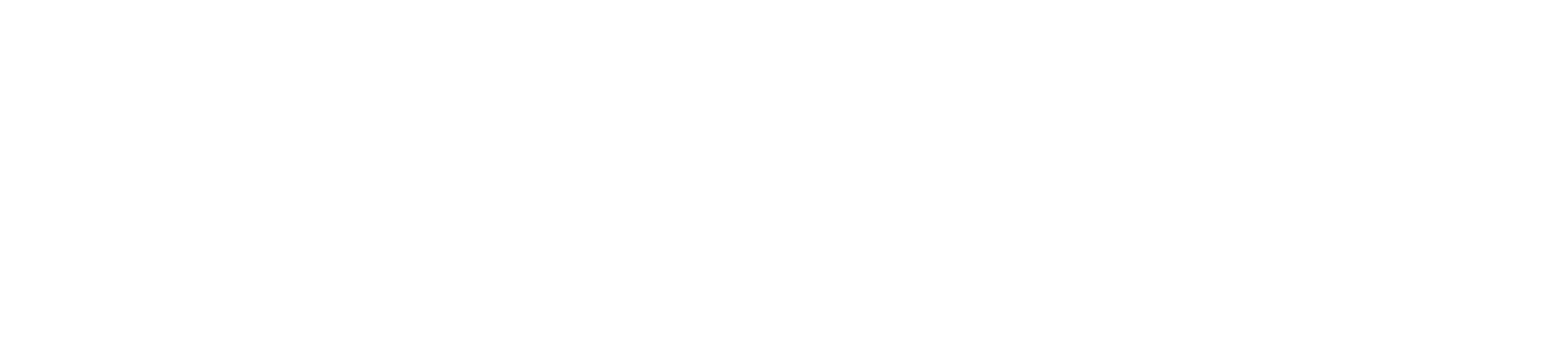 Storyblocks-logo_white-1